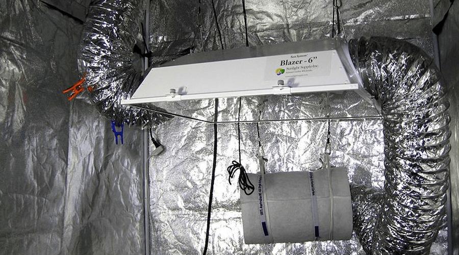 grow tent setup