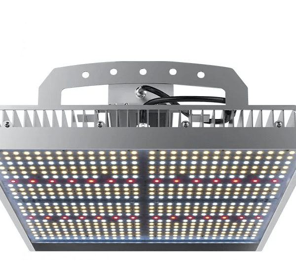 Street Light XT-420 LED