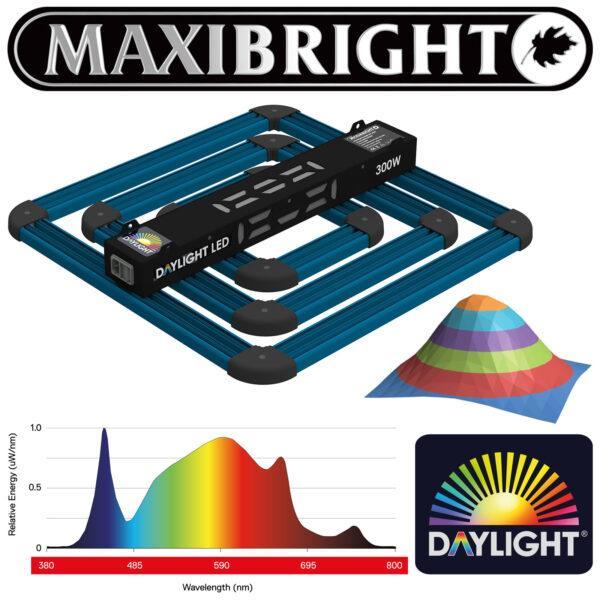 Maxibright Daylight 300w LED