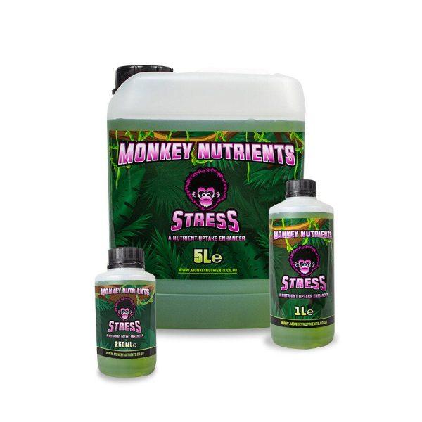 MONKEY – STRESS