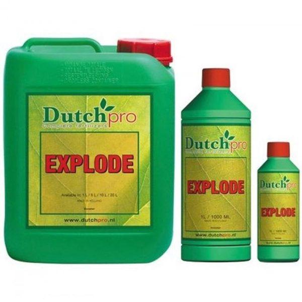 Dutch Pro – Explode