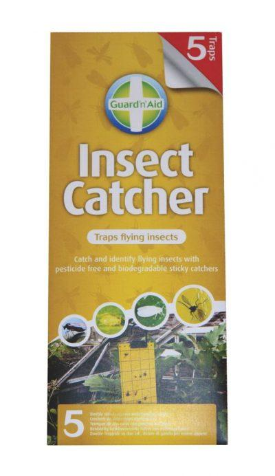 Sticky Fly Traps – Pack of 5